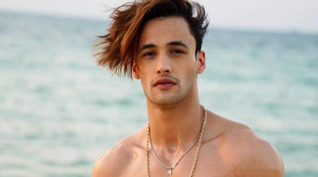 Unknown Facts About Bigg Boss Fame Asim Riaz