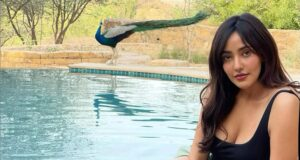 Neha Sharma Sizzles in Latest Picture